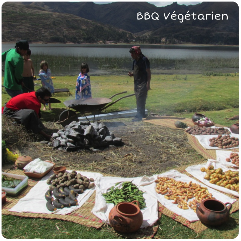 bbq-vegetarien